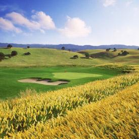 golfspecialsbtn